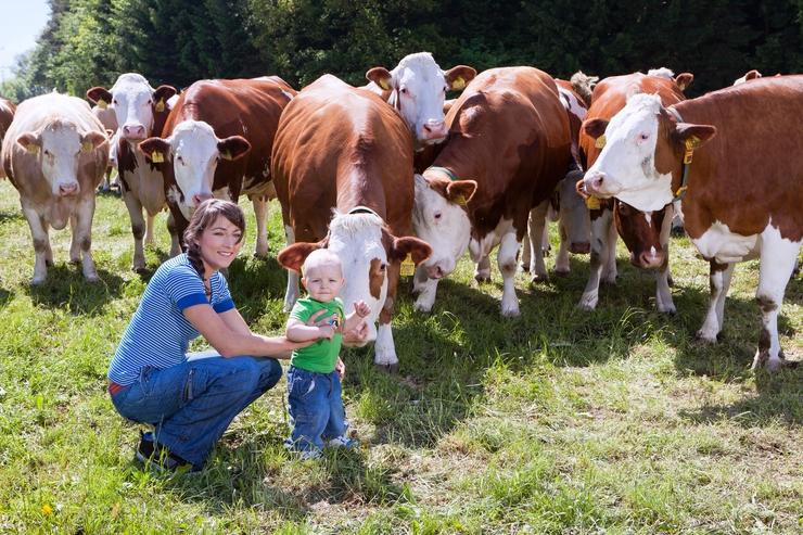 Pravda alebo lož. Aj takto by sa dal jednoduchšie preložiť názov mýty a fakty. V dnešnom článku si povieme, aké ja pravda alebo klamstvo o mlieku a mliečnych výrobkoch.