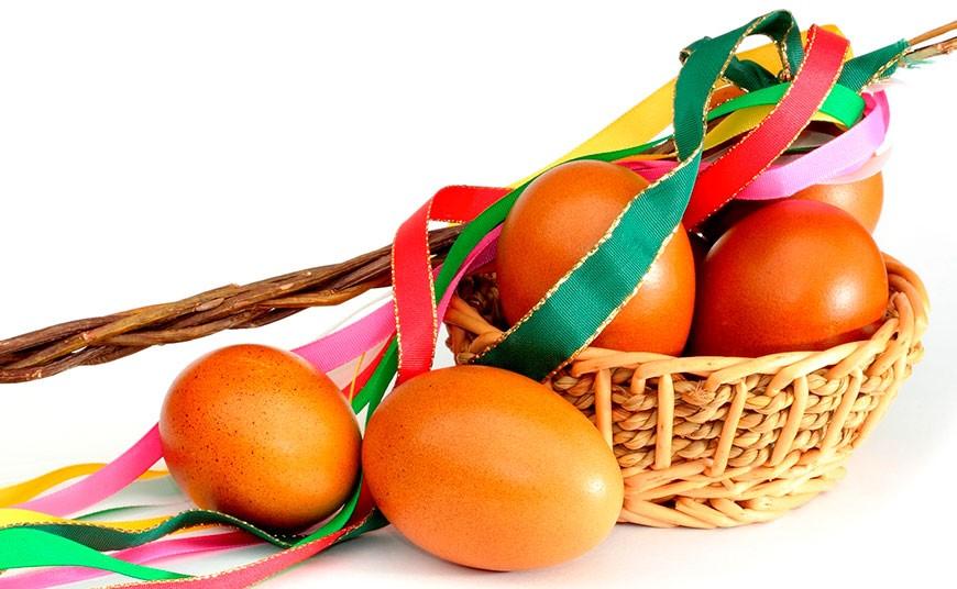 Označenie vajec - vysvetlenie Tesco